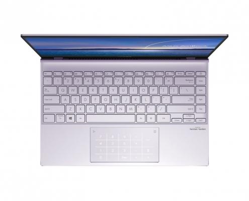 ASUS ZenBook 14 UM425IA birdseye