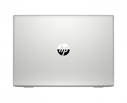 HP ProBook 445 G7 hinten