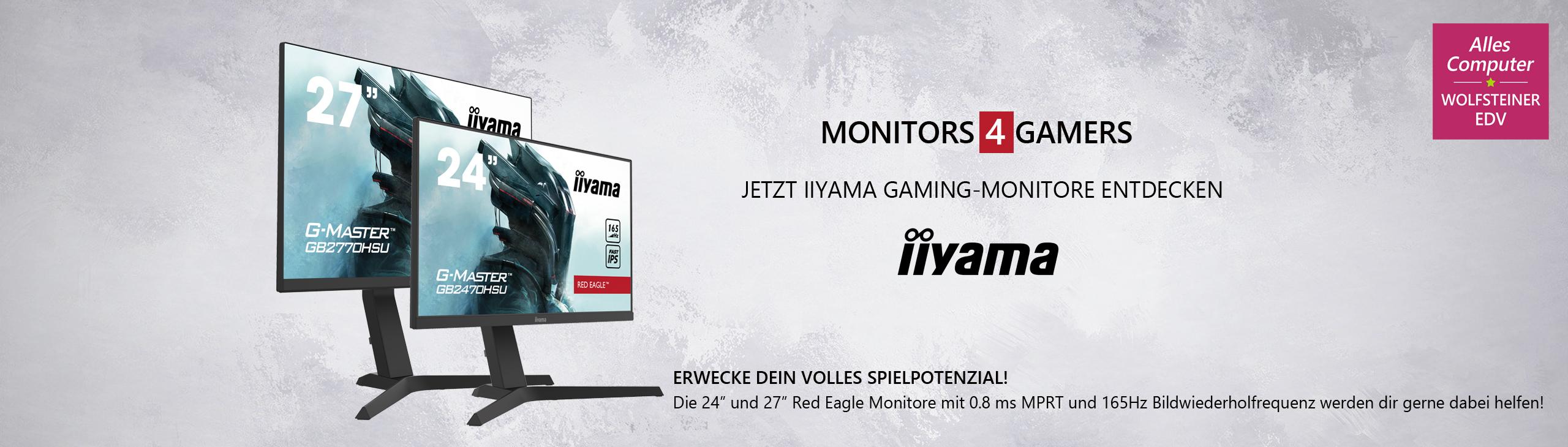 Banner iiyama RedEagle Gaming Monitor