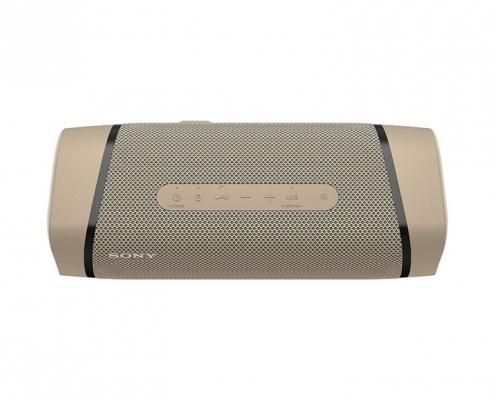 Sony SRS-XB33 taupe -oben